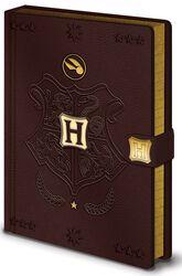Quidditch - Premium Anteckningsbok