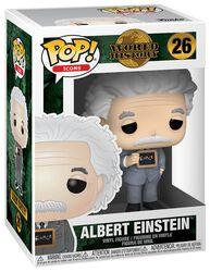 World History - Albert Einstein vinylfigur 26