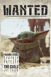 The Mandalorian - Baby Yoda Wanted