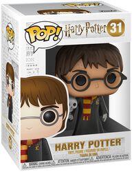 Harry with Hedwig - vinylfigur 31