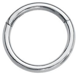 Segment Ring With Hinge